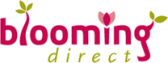 Blooming Direct Special Offers